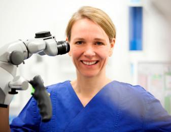 Fokus Endodontologie – Meindentist am Arkonaplatz 4
